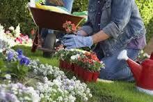 tareas-jardineria