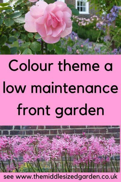 Temáticas de color rosa bajo mantenimiento jardín